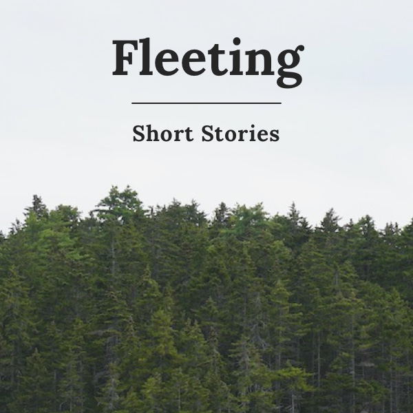 Fleeting Cover
